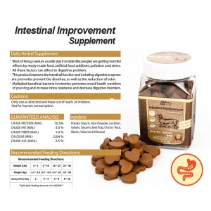 Healthy Series - Digestive Care Supplements for Dogs & Cats