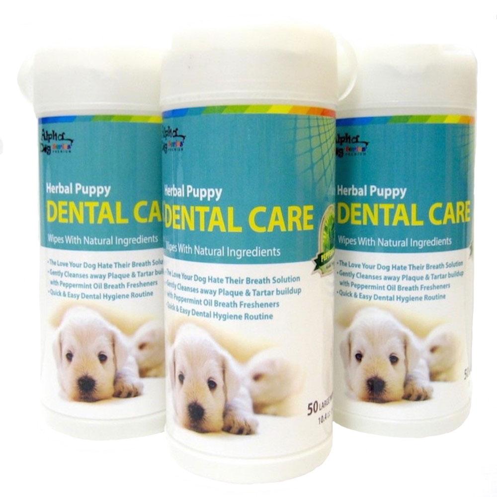 Alpha Dog Series Dental Care Wipes (50pcs) - Pack of 3