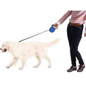 Retractable Dog Leash - Alpha Dog Series