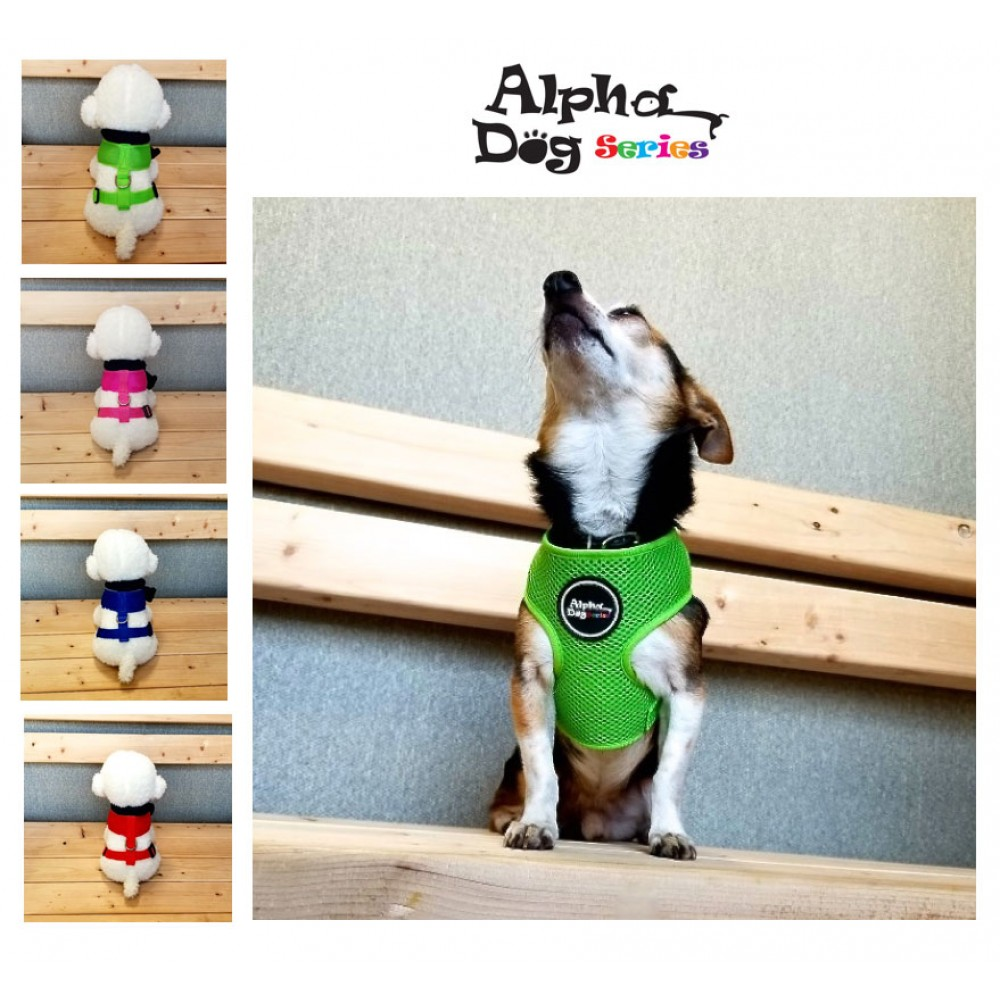 Alpha Dog Series Pet Safety Harness